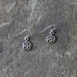 Spiral of Life Celtic Earrings